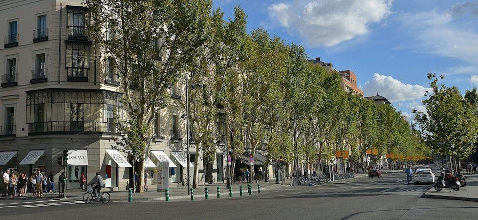calle goya madrid 948