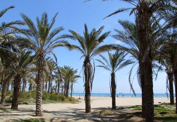 playa pinar castellón