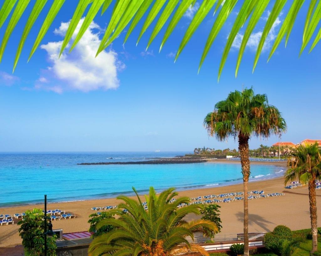 Canarias vivienda protegida