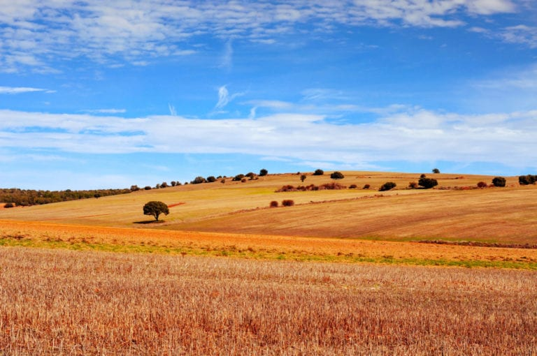 Martinsa Fadesa vende 37 suelos para hacer viviendas al Ayuntamiento de Soria