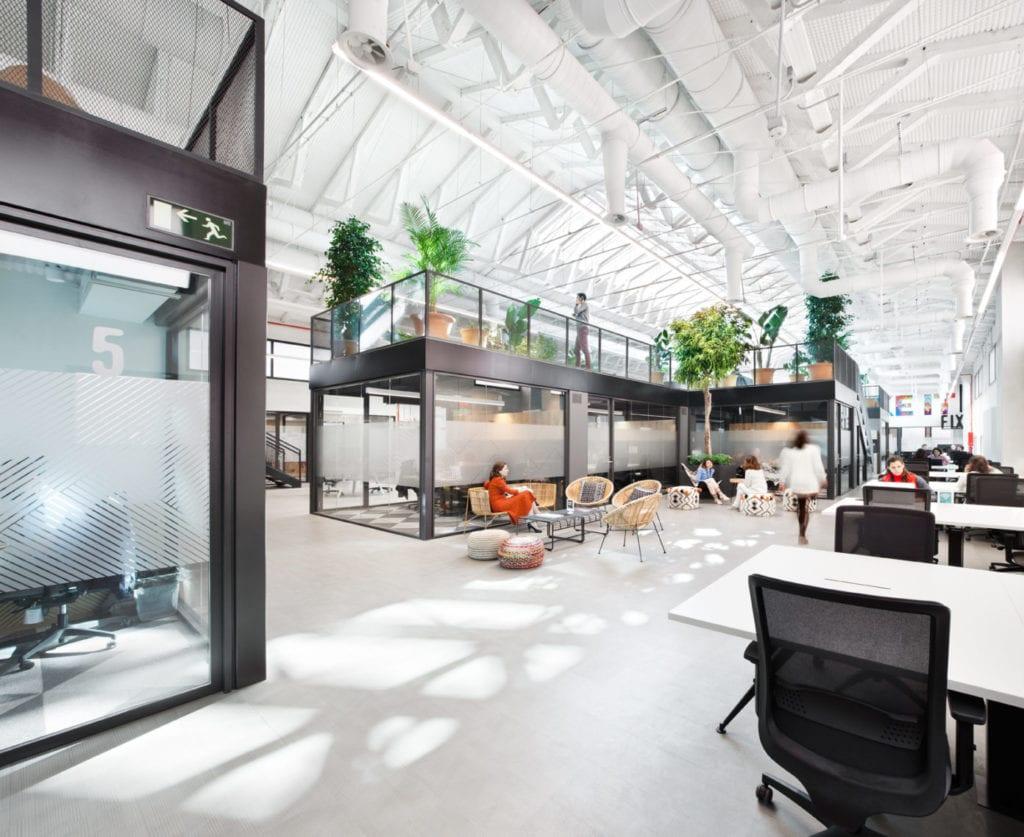 Loom Sustainable Startups